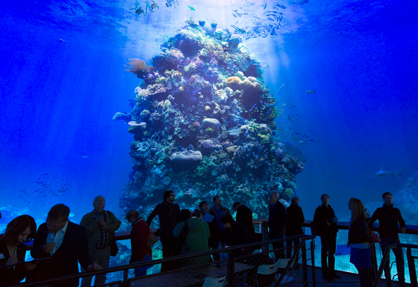 great-barrier-reef-panometer-leipzig-designboom-09