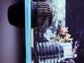 hydrowizard-hw42-vortech-mp40-2