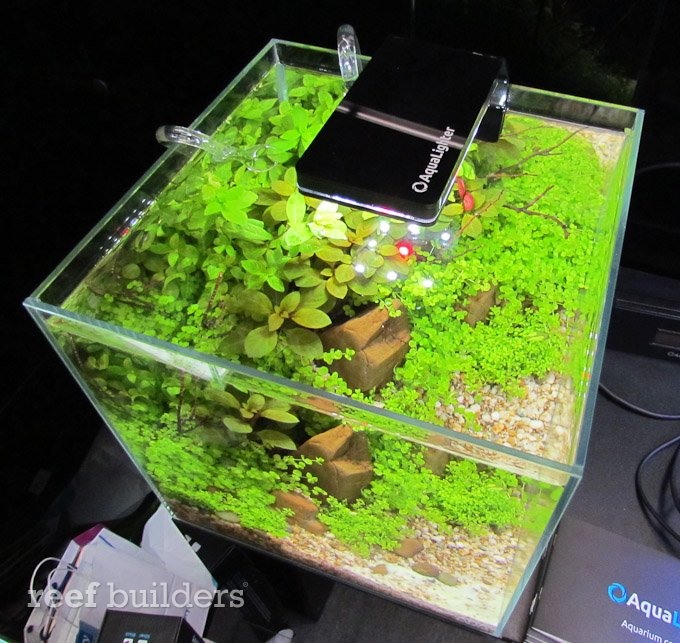 ukraine nano led aquarium light