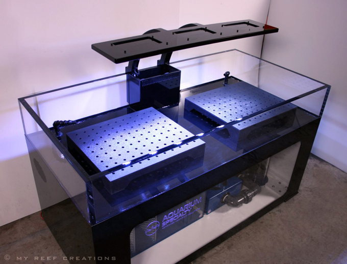 aquarium specialty trade show aquarium