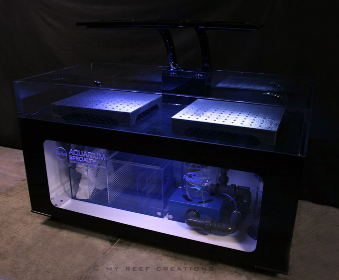 Aquarium Specialty And My Reef Creation Team Up To Build