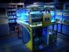 neo-aquarium-display-2