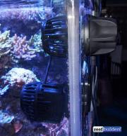 neptune systems wav pump 1link-16