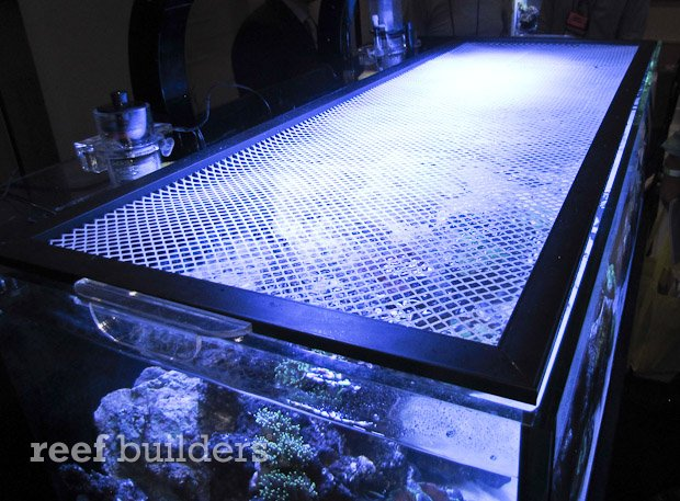 Nuvo shallow reef series aquariums are well equipped for for Fish tank screen