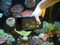 ovision-underwater-iphone-case-11