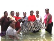 PNG SEASMART coral mariculture program 7
