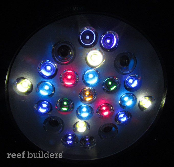 Radion Pro S Eight Color Led Cluster Brings Out Incredible