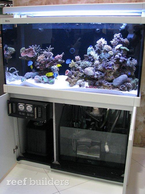 red sea max s 500 440 liter 116 gallon reef aquarium. Black Bedroom Furniture Sets. Home Design Ideas