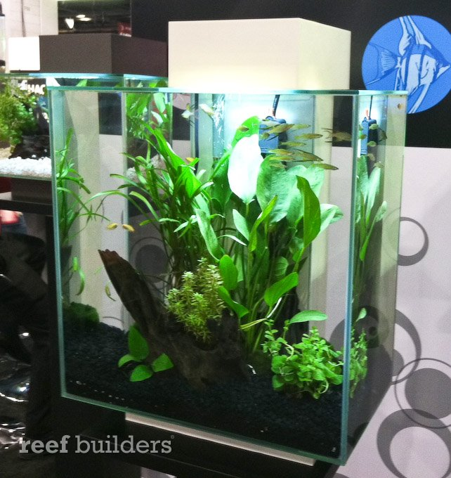 New Fluval Edge 46l Aquarium Is Twice As Tall And Double The Volume Reef Builders The Reef