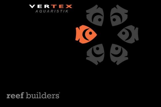 vertex-desktop-10