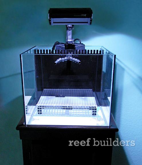 Starfire Nano Tanks From Wilco Design Are Beautiful Little