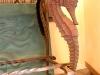 bronzed-seahorse-aquarium-5