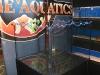 ice-age-aquarium-8
