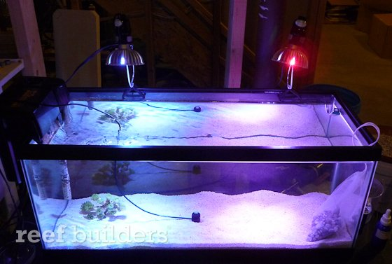 ledio-led-spotlight-reef-2