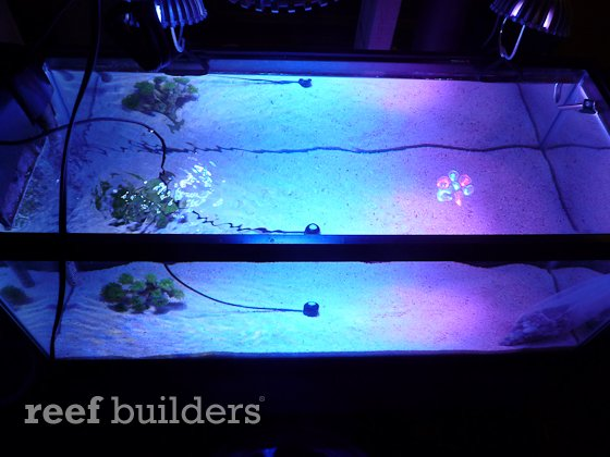 ledio-led-spotlight-reef-4