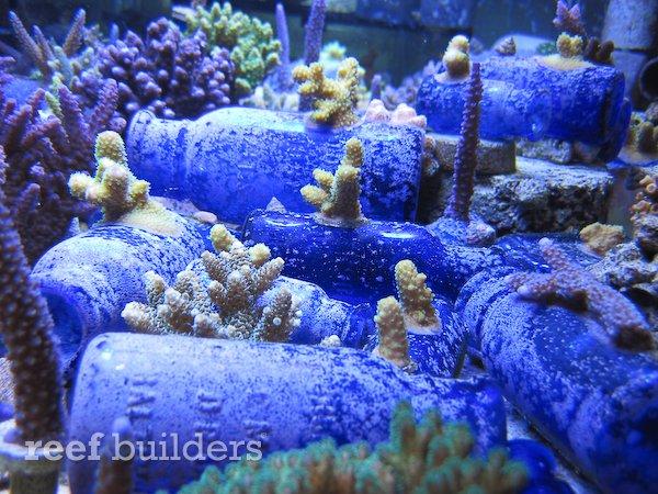 live-bottles-baltimore-blue-glass-6