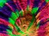 tyedyescolymia-12.jpg