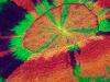 tyedyescolymia-15.jpg