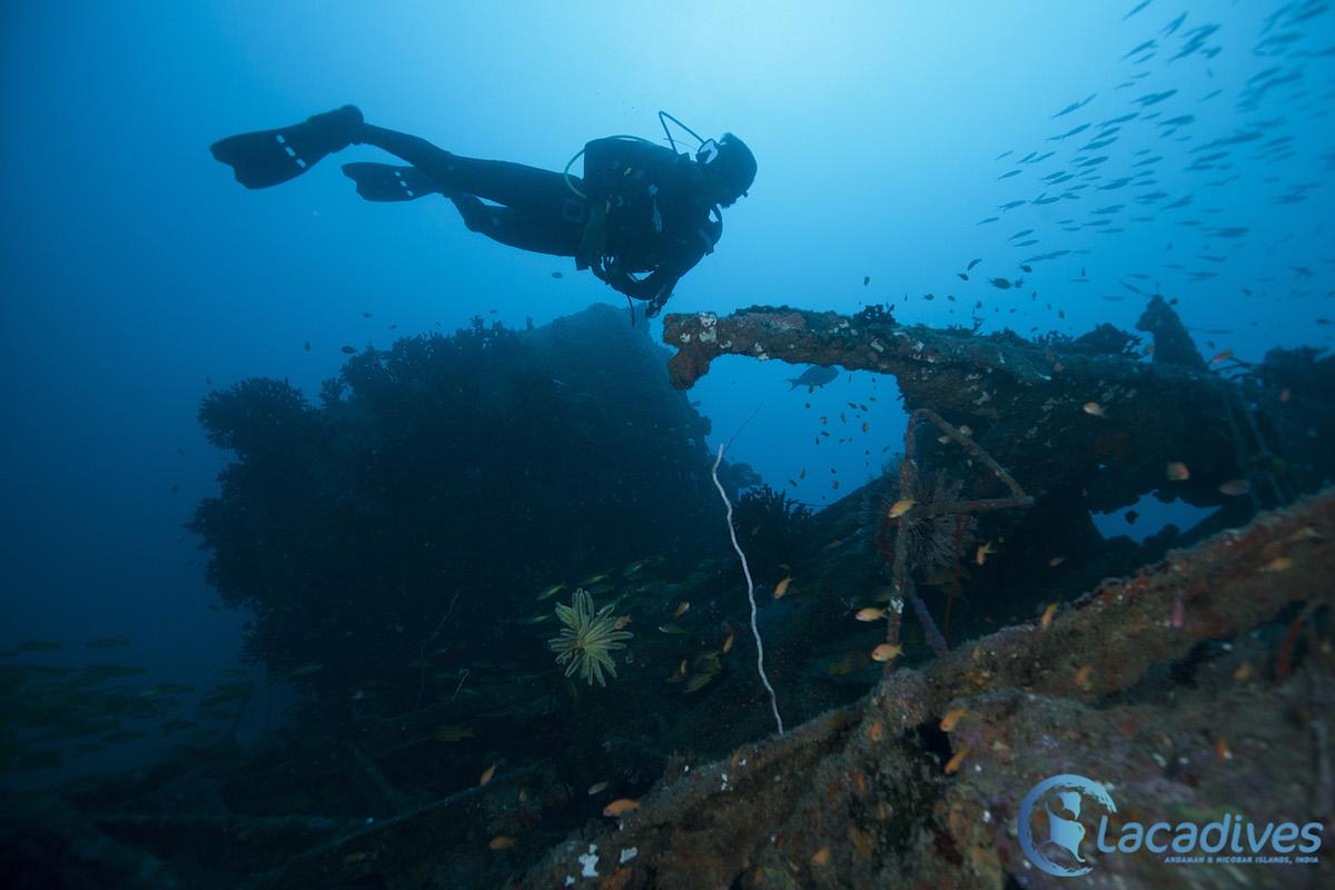 Shipwreck dive Photo @Luminousdeep