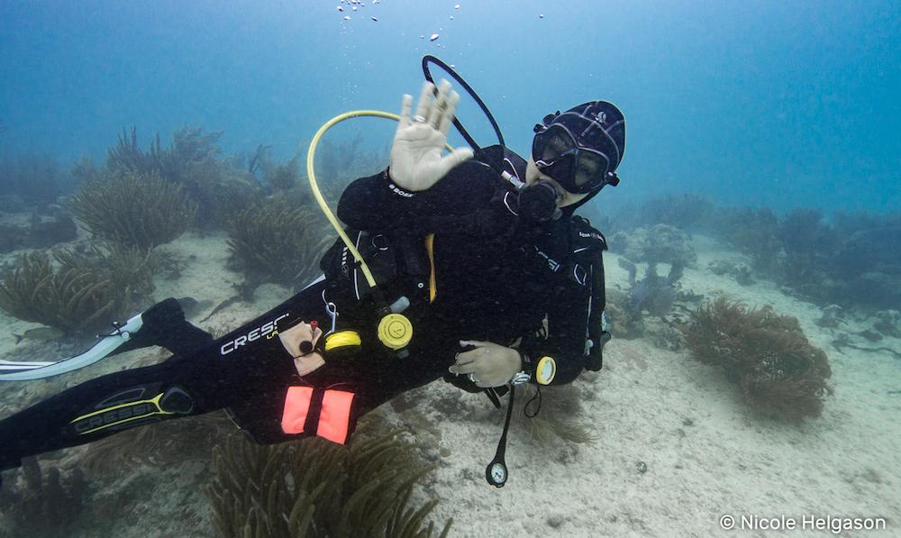 Scuba Diver Playa Del Carmen